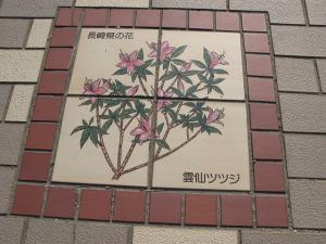長崎県 雲仙ツツジ