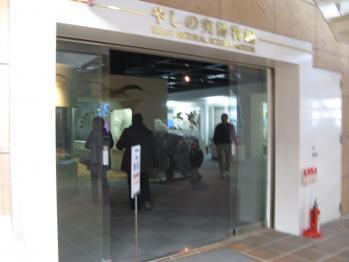 やしの実博物館
