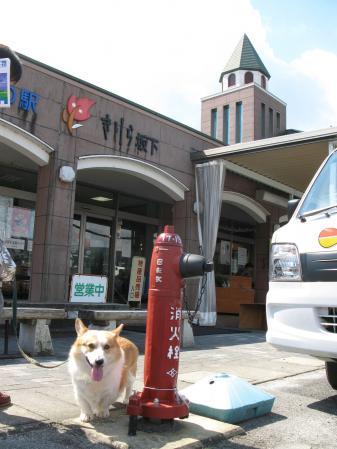 道の駅『きりら坂下』
