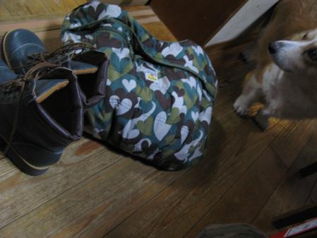 緑のバッグと靴
