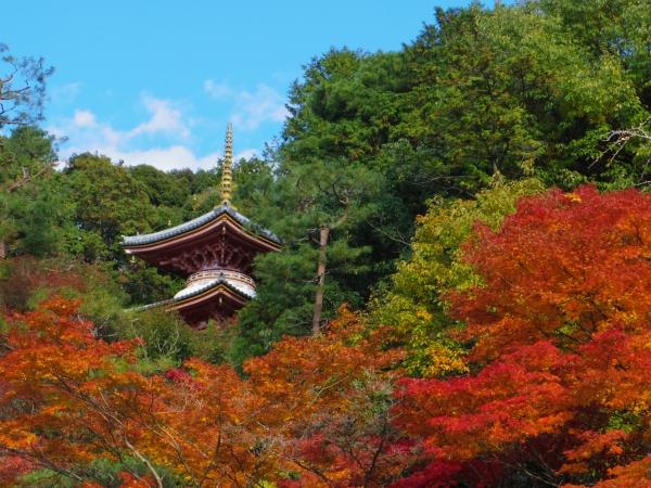 今熊野観音寺9