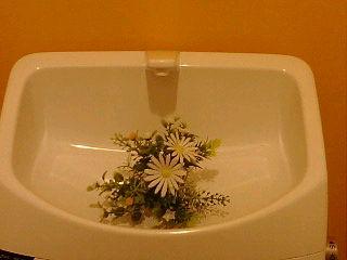 トイレの飾り。