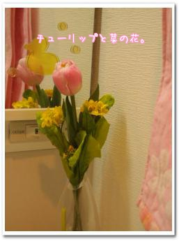 チューリップと菜の花。
