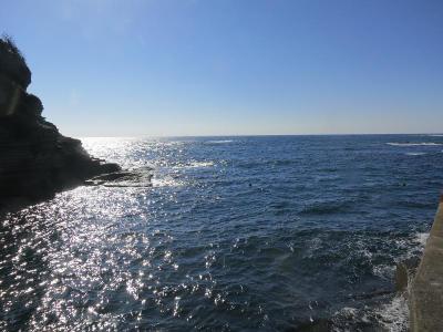 11-08 今日の海