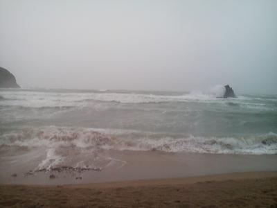 11-26 今日の海
