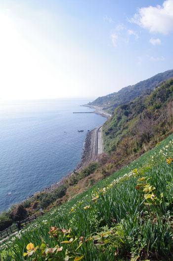 黒岩水仙峡