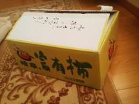 岐阜県 富有柿