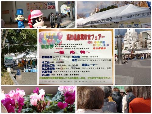 2011-12-232.jpg