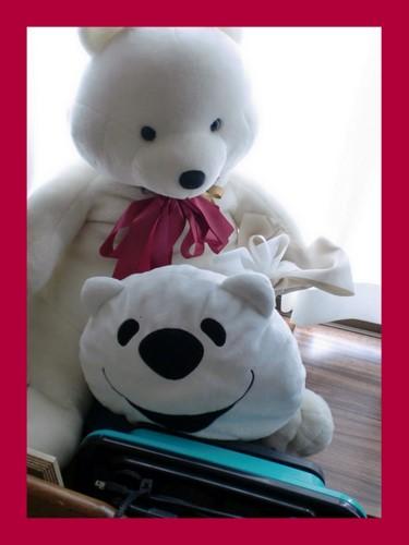 2012-01-15_20120120161450.jpg
