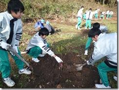 201001203植樹活動 099