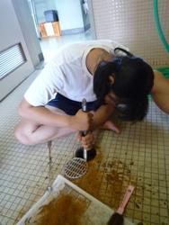 20100807トイレ掃除8月5