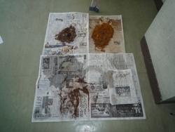 20100807トイレ掃除8月2