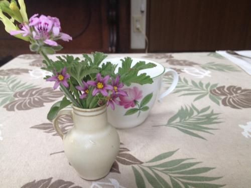 littleflower1