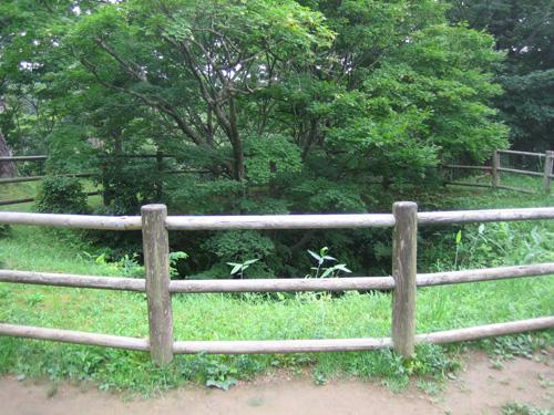 春日山城 06