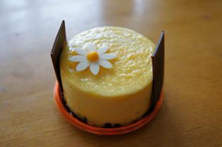 ハリエ ケーキ3