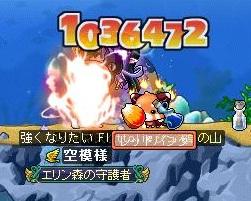 Maple120324_122018.jpg