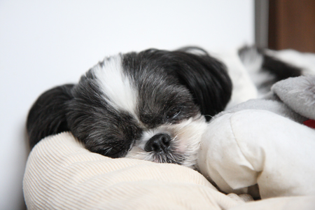 一人で寝てるから。