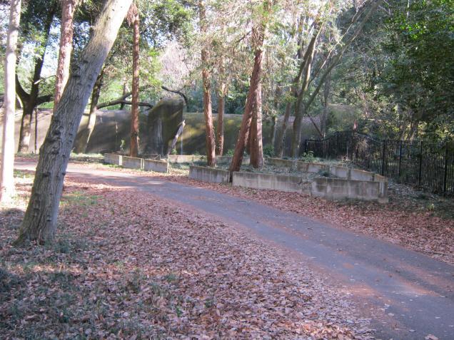 群馬の森 (8)