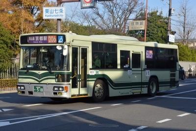 DSC_0246-m.jpg