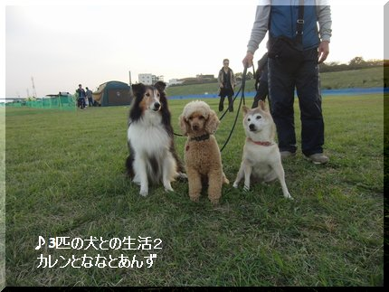 神奈川B平塚四宮
