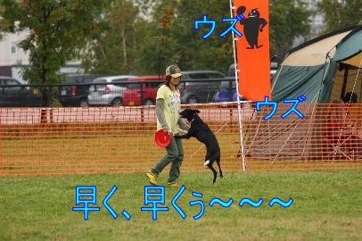 100_20101012083702.jpg
