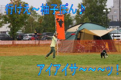 104_20101012083701.jpg