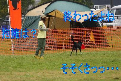 115_20101012083732.jpg