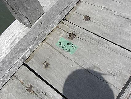中の島ブリッジパーク(中の島遊歩道橋) 「キケン」
