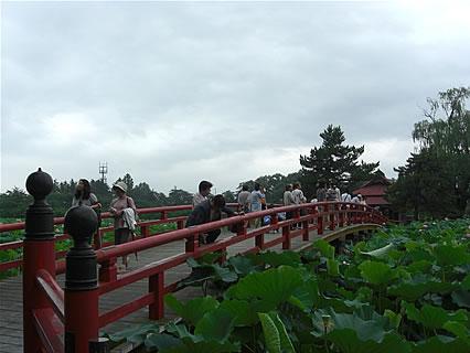 猿賀神社 胸肩神社 橋