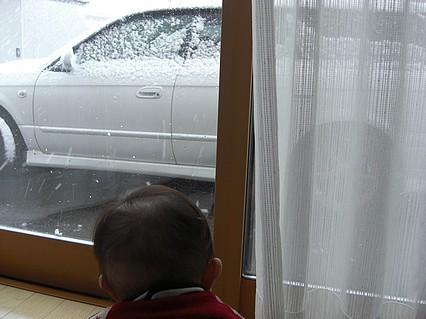 息子くん 窓越しの雪