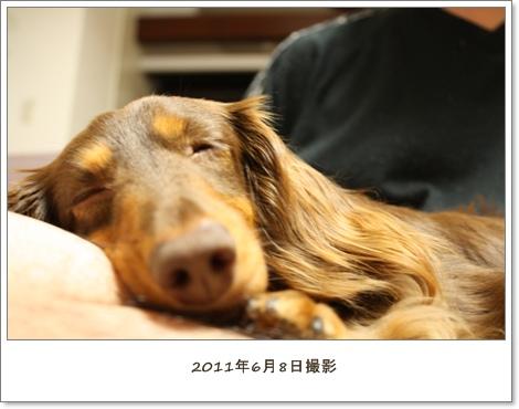 IMG_9408.jpg
