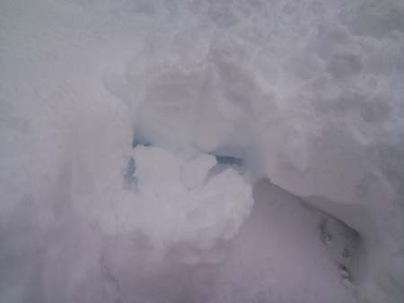 5日雪青い雪