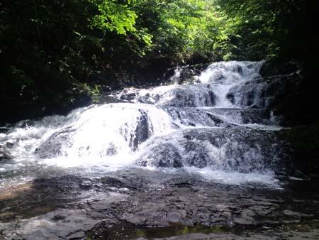 H24魚止めの滝
