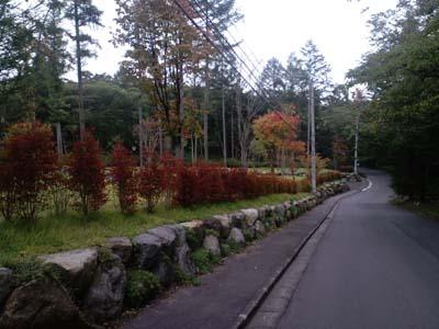 H24千ヶ滝紅葉