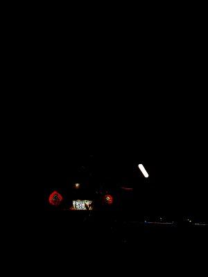 s-14vividlight.jpg