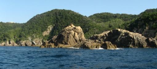 赤島 2010828