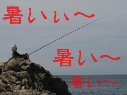 2010828  玉ちゃん