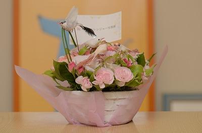お花も綺麗♪