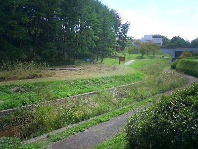 広大外川研2010秋 061