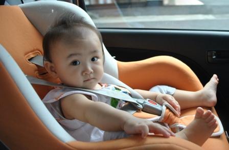 20110818Amakusa_1.jpg
