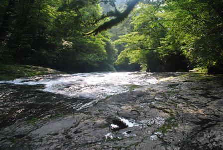 20110819Kikuchikeikoku_14.jpg