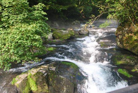 20110819Kikuchikeikoku_18.jpg