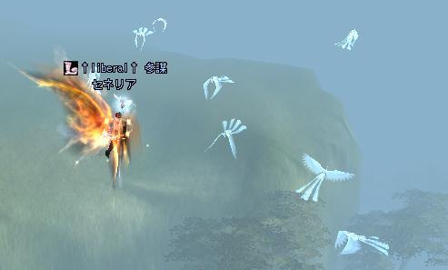 空中戦って大変よね・・・