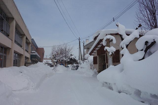 hokkaido2013w0207.jpg