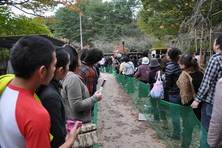 20101102miwa1.jpg