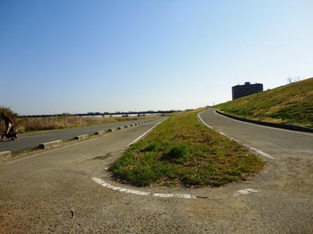 20110401sairo2.jpg