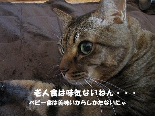 おじいちゃんでしょ!.jpg