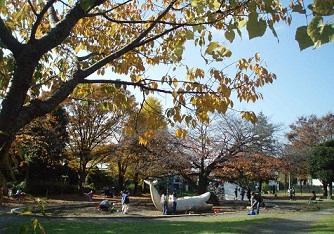 稲田公園内
