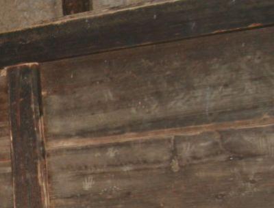 ハクビシンの足跡