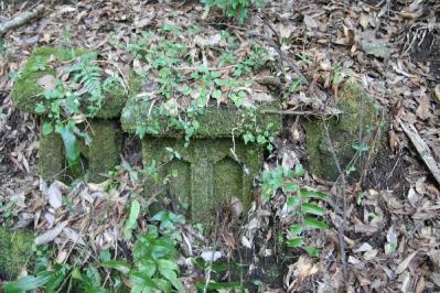 裏山の石祠